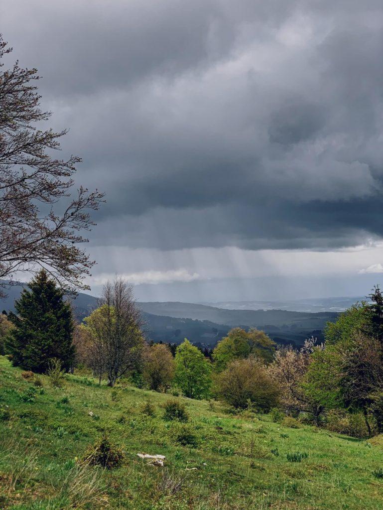 Matthias Maier | Spring rain
