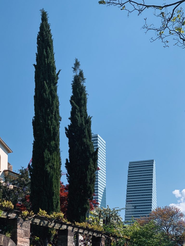 Matthias Maier   Towers and Cypresses
