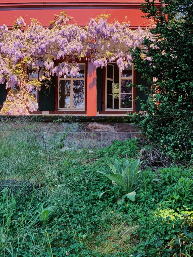 Matthias Maier   A morning in spring