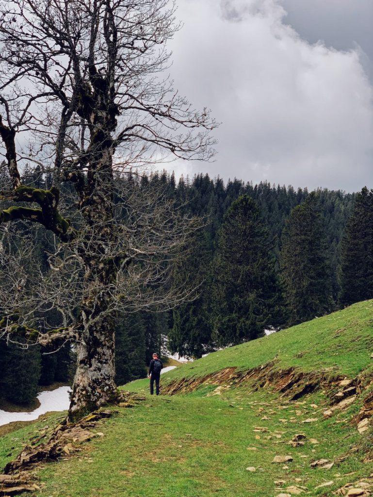 Matthias Maier | Hiking