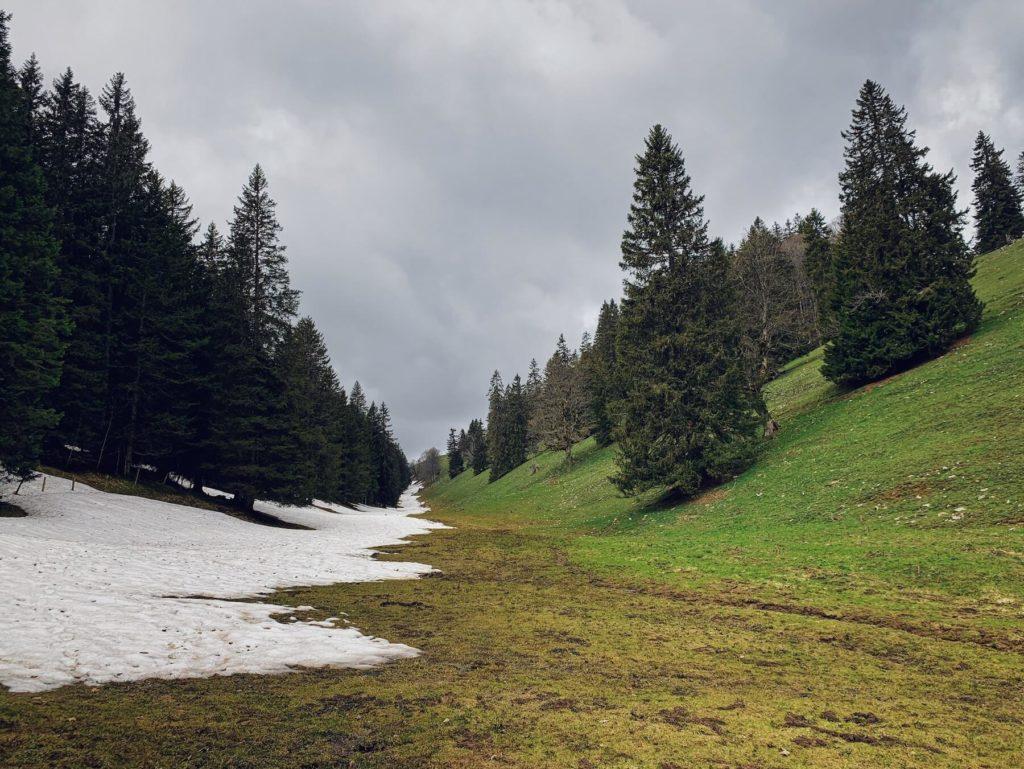 Matthias Maier | The last snow