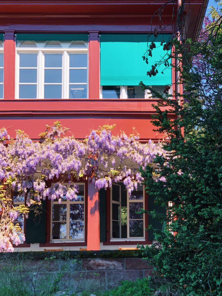 Matthias Maier   Summer house