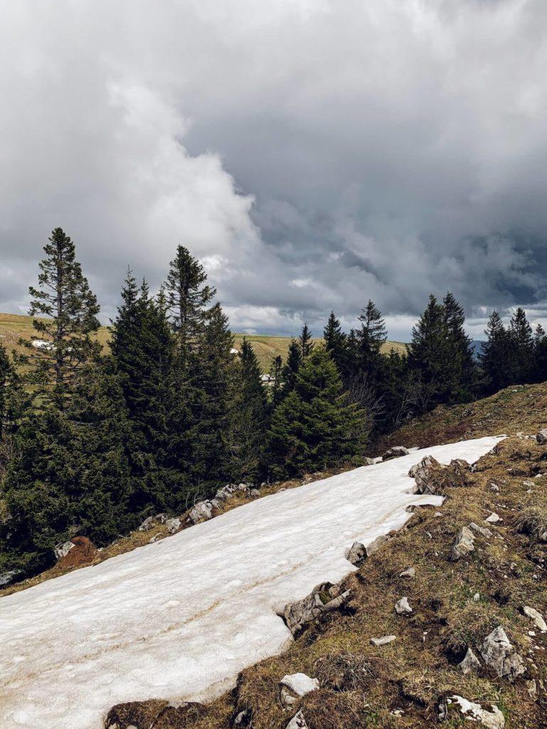 Matthias Maier | The end of winter