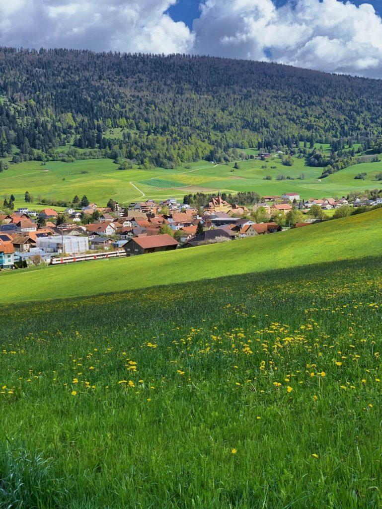 Matthias Maier | Jura Village