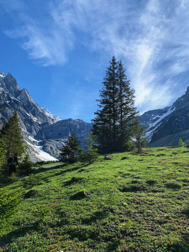 Matthias Maier   Mountain morning