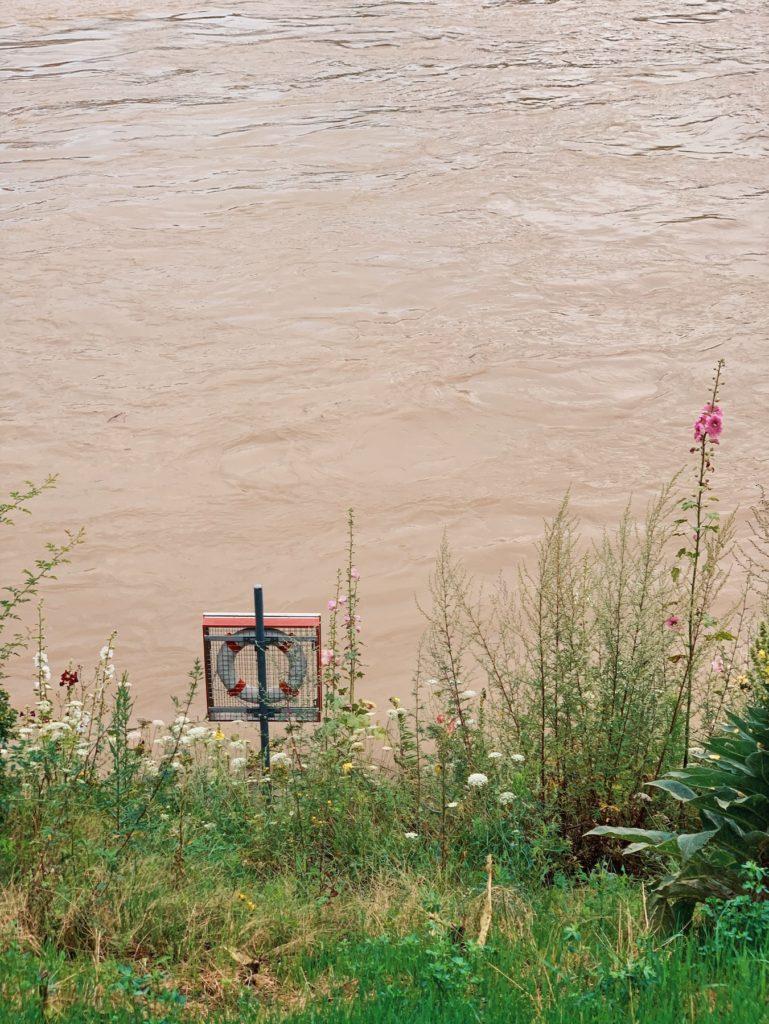 Matthias Maier | Flood flowers