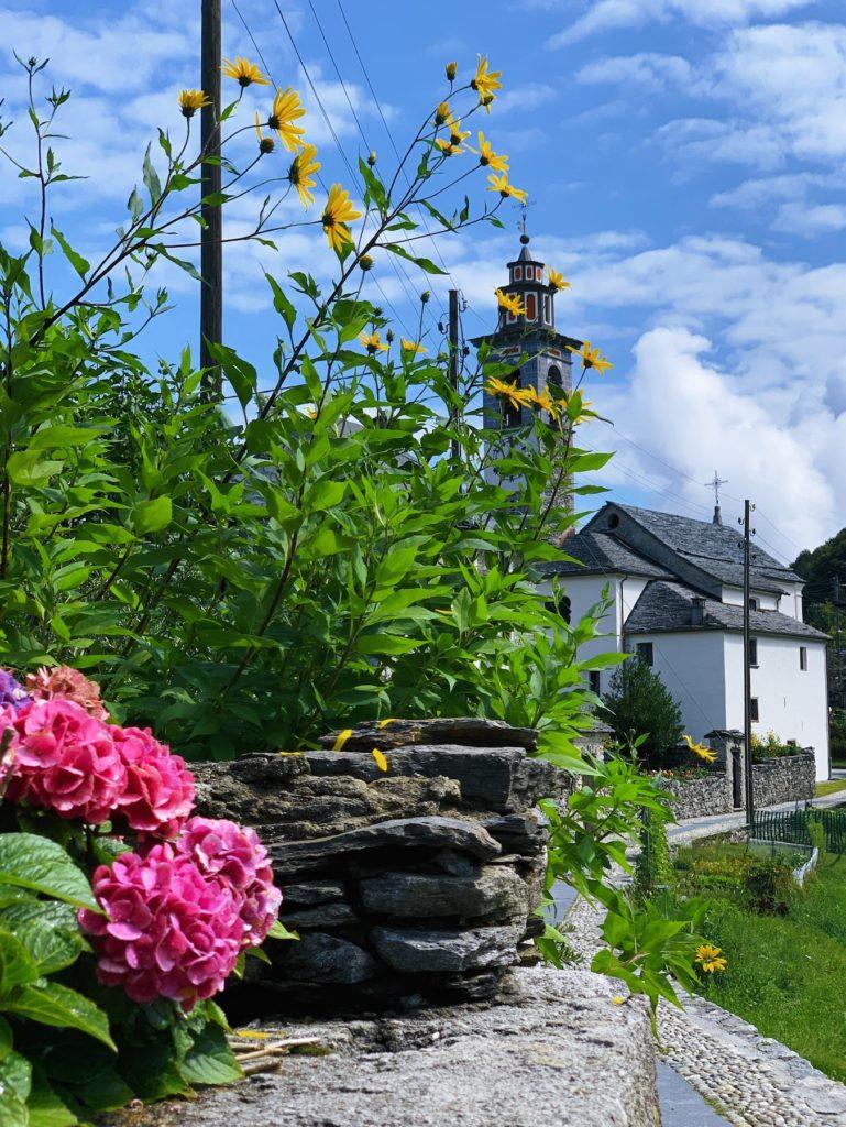 Matthias Maier   Village Flowers