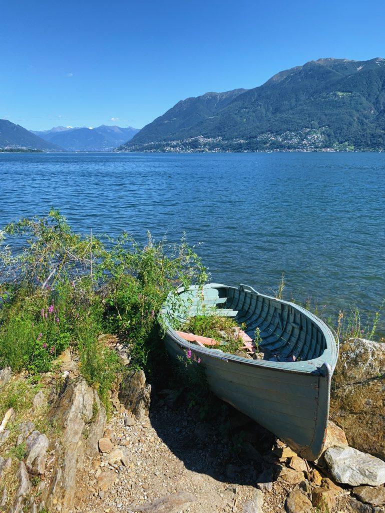 Matthias Maier | Rowing boat