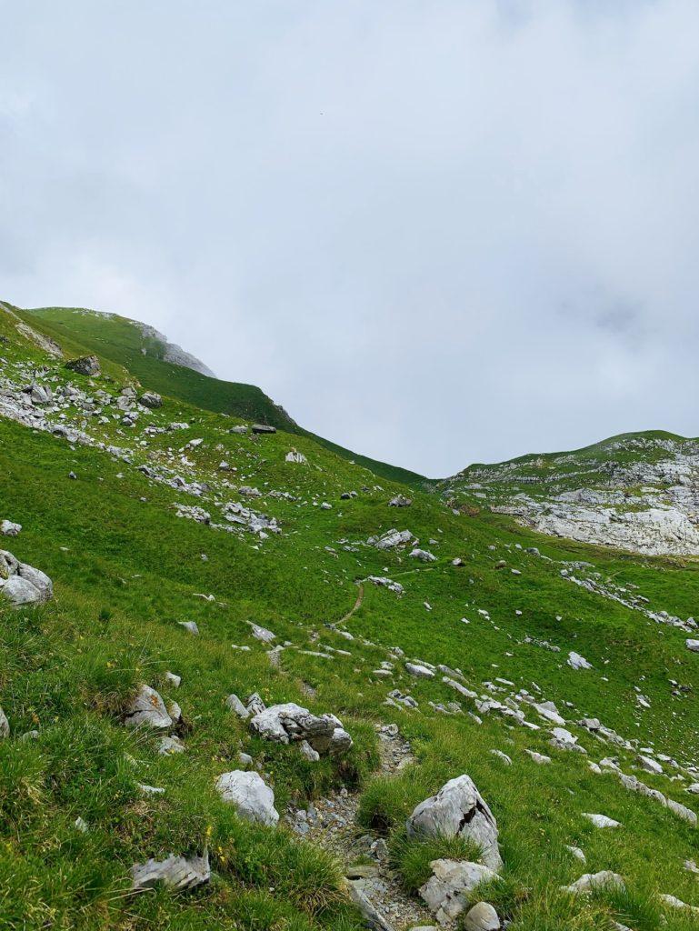 Matthias Maier | Hiking Trail