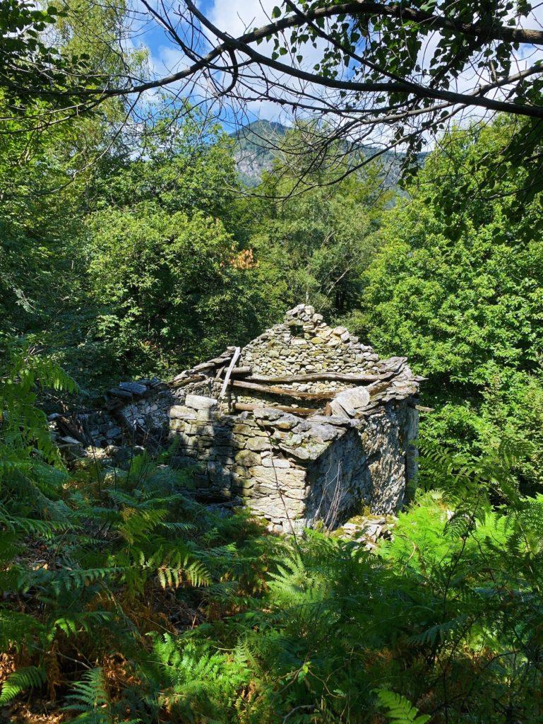 Matthias Maier | Abandoned cottage